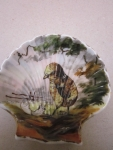 Mušle porcelán
